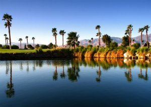 Palm Springs Natural Real Estate