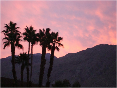 Palm Springs Sunset